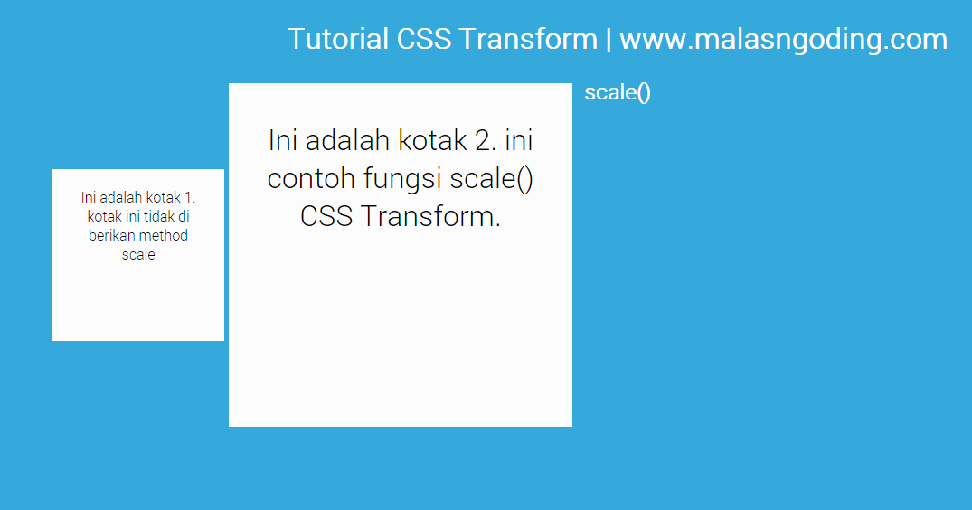 contoh transform css scale